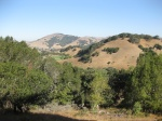 An early morning on Mt. Burdell